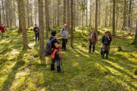 Skogsvandring i Ödmården - foto Jan Eriksson