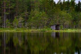 Skogsjö i Hamrångebygden - foto Jan Eriksson