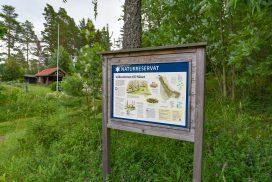 Naturreservatet Näset i Hamrångebygden - foto Jan Eriksson